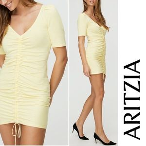 BNWT ARITZIA Nissa Dress